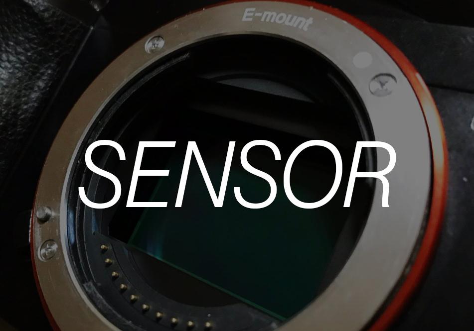 【3分で分かる】APS-C?フルサイズ?カメラのセンサーサイズの大きさを解説