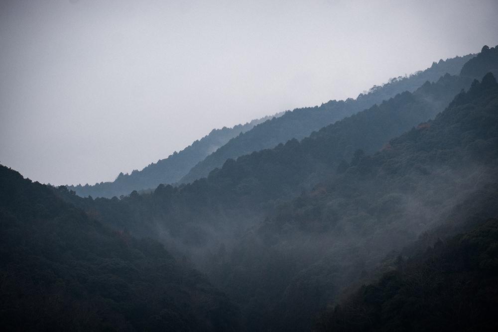 錦帯橋から見える景色
